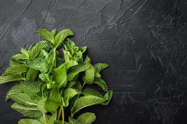 신선한 민트 잎 허브 세트, 검은 돌 배경, 위쪽 보기 플랫 레이, 텍스트 복사 공간