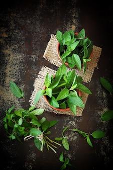 ボウルに新鮮なミントの葉