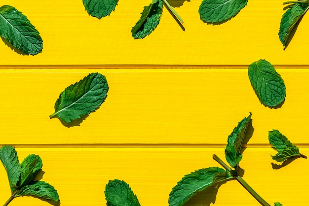 Fresh mint leaves isolated on yellow, top view.