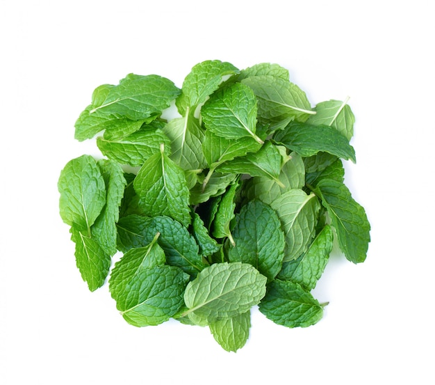 Fresh mint leaves pattern isolated