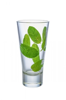 Fresh mint leaves on walls of empty wet highball glass isolated on white