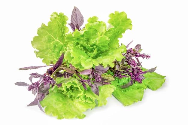 신선한 혼합 된 샐러드 잎 흰색 절연