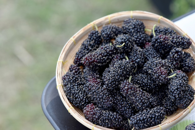 Fresh mulberry fruits on nature background.