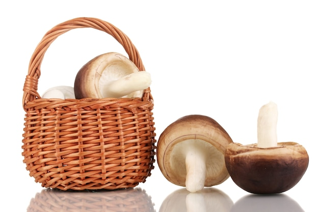 Fresh mushrooms in basket on white