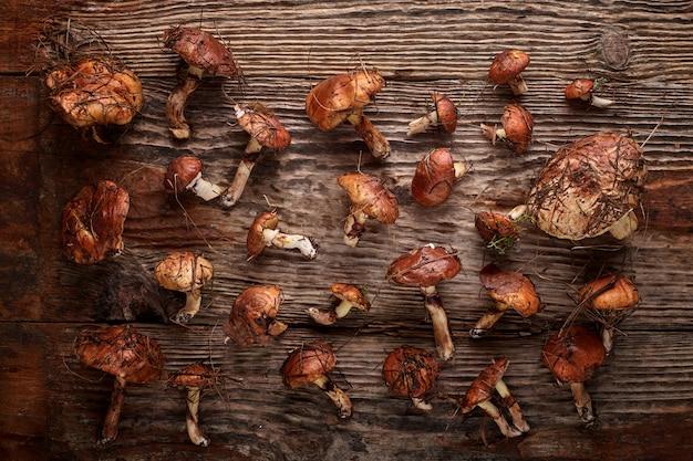 Fresh mushrooms of boletus on old wooden board.