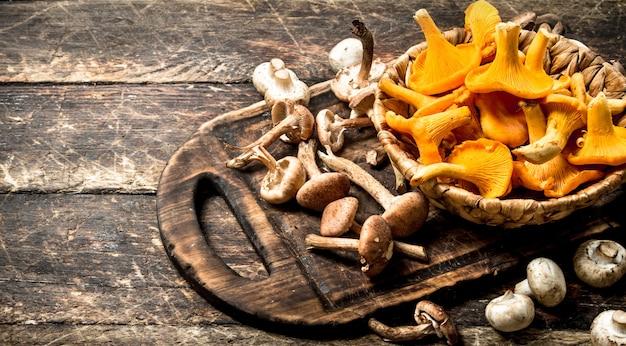 신선한 버섯, 꿀 agarics 및 살구.