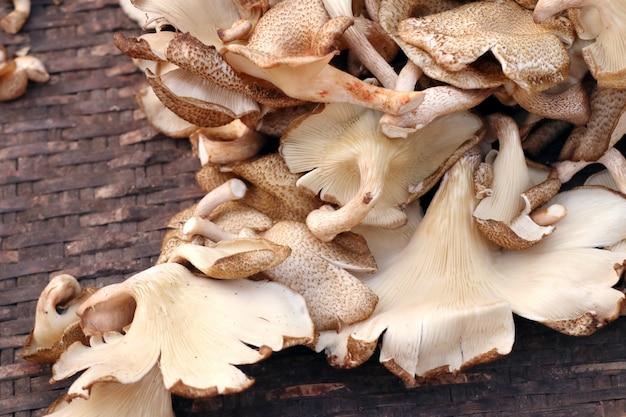 Fresh mushrooms at the market