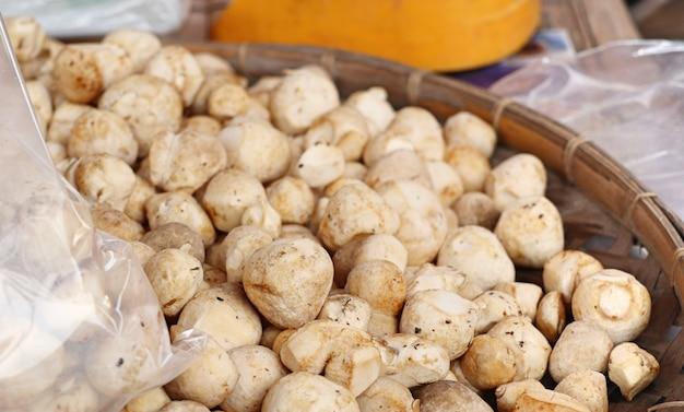 Fresh mushrooms at market