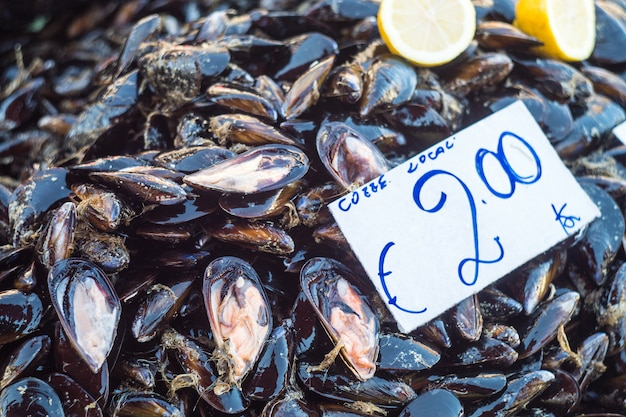 Fresh mussels on fish farmer market ready for sale and use for ingredient