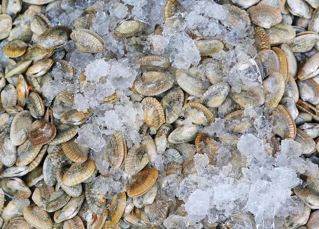 얼음으로 신선한 홍합