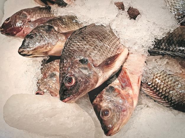 얼음 더미에 신선한 나일 틸라피아 물고기