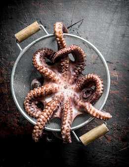 Fresh octopus in a colander. on dark rustic table