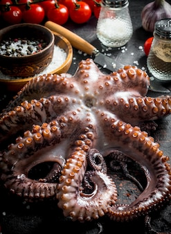 Fresh octopus with spices on dark wooden table