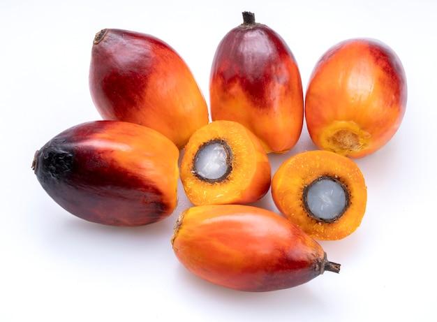 Свежие плоды масличной пальмы, изолированные на белом фоне.