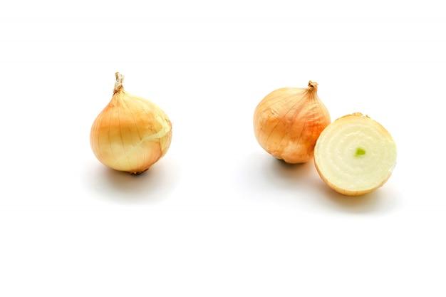 Fresh onion bulbs isolated on white surface