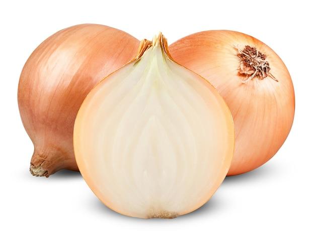 Fresh onion bulbs isolated on white