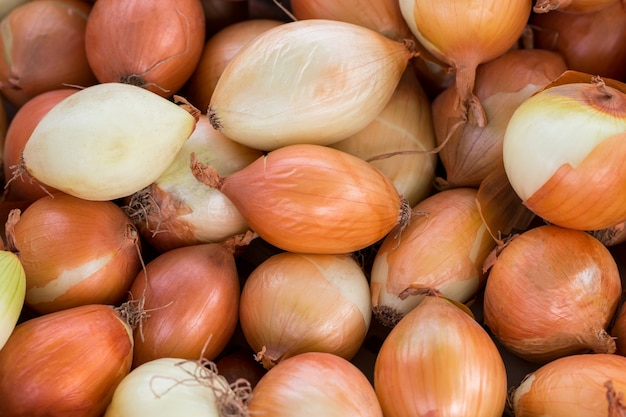 Fresh onions background in market
