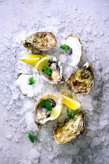 Fresh opened oysters, lemon, herbs, ice on concrete stone grey.