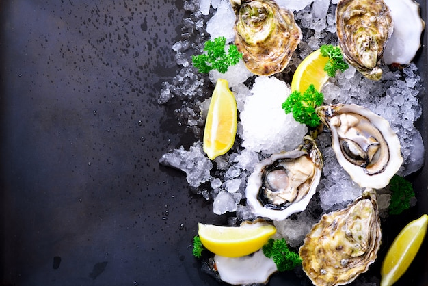 Fresh opened oysters, lemon, herbs, ice on dark metal. top view, copy space