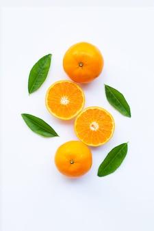 Свежие оранжевые цитрусовые на белом. Premium Фотографии