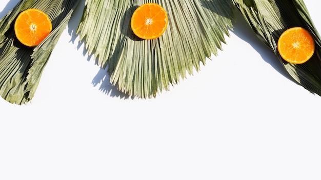 Fresh orange fruit on fiji fan palm dry leaves
