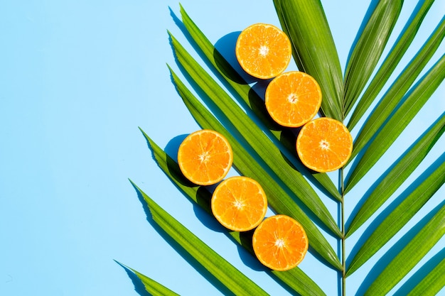 Fresh orange fruit on tropical palm leaves