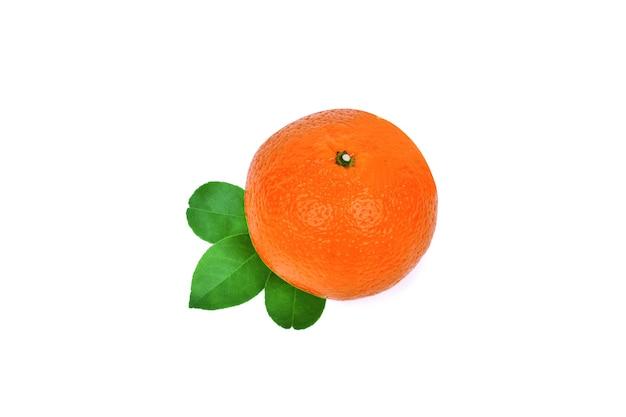 分離された新鮮なオレンジみかん