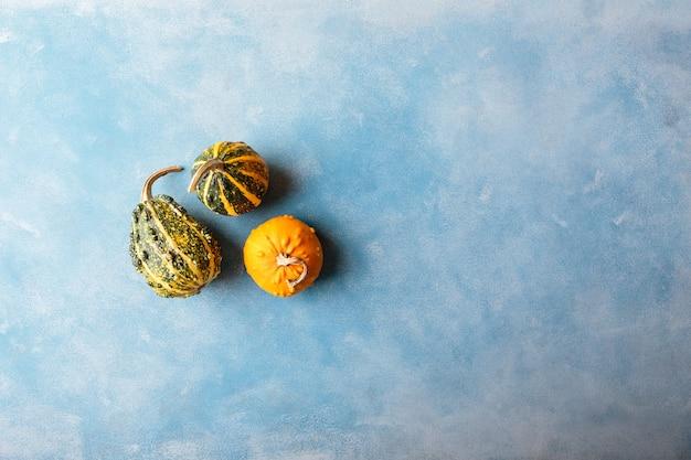新鮮なオレンジ色の小さなカボチャ。上面図