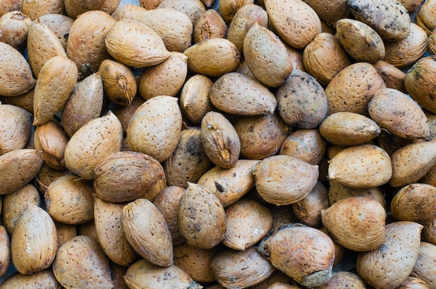 Fresh organic almonds with shell