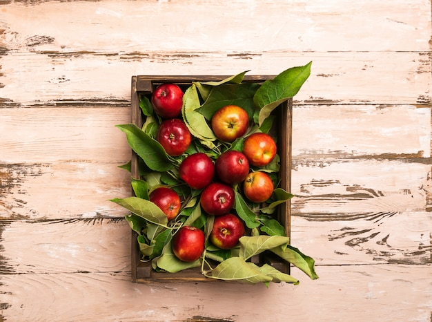 Fresh organic apples in a wooden crate rustic wood