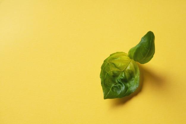 黄色い紙の背景に新鮮な有機バジル。最小限の食品の概念。ポップアート。上面図。フラットレイ
