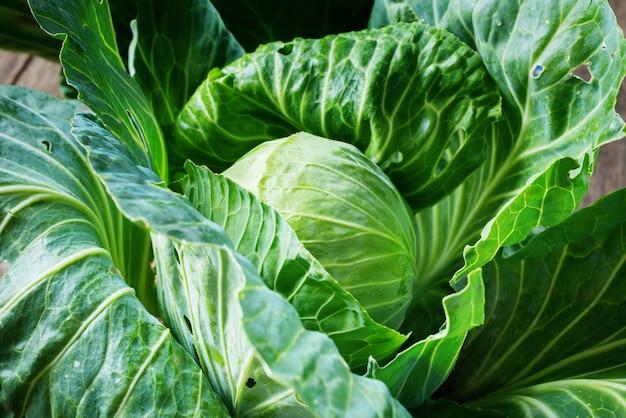 Свежий органический овощ капусты на деревянном деревенском