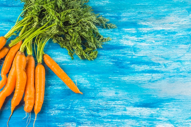 Fresh organic carrots on blue wooden background
