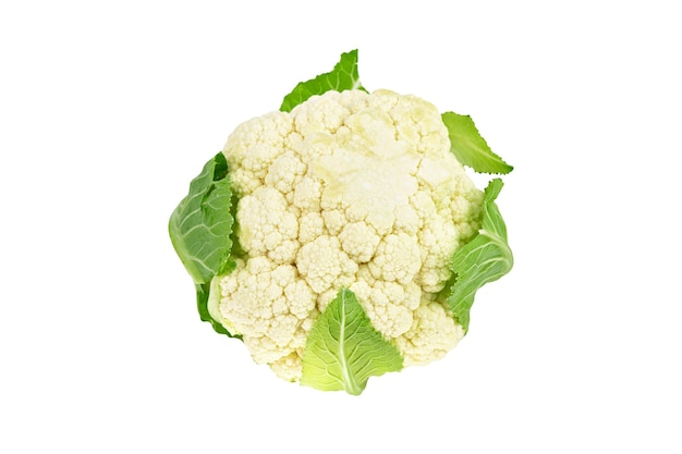 Fresh organic cauliflower zucchini squash vegetable isolated on white