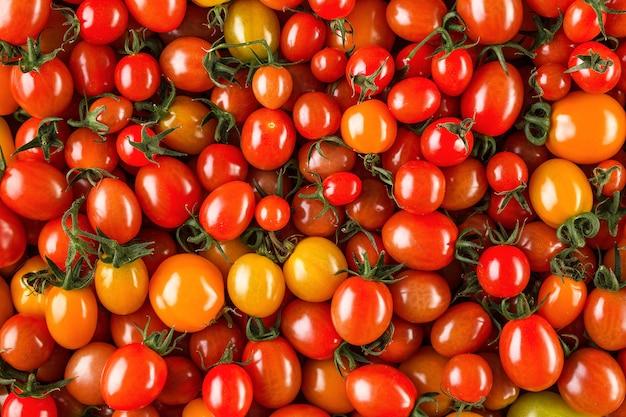 Fresh organic cherry tomatoes as , closeup