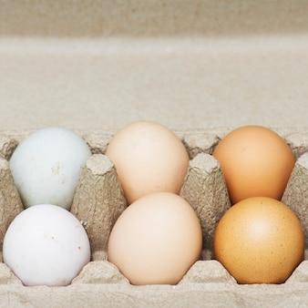新鮮な有機卵