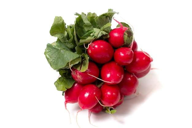 Fresh organic european radish root