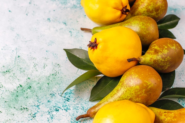 Fresh organic farm fruits, pears, quince, top view