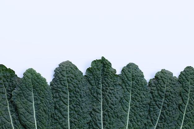 Свежие органические зеленые листья капусты на белом.