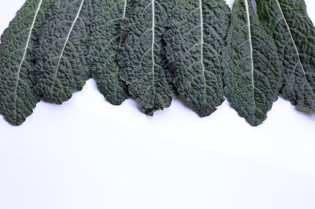 白地に新鮮なオーガニックグリーンケールの葉