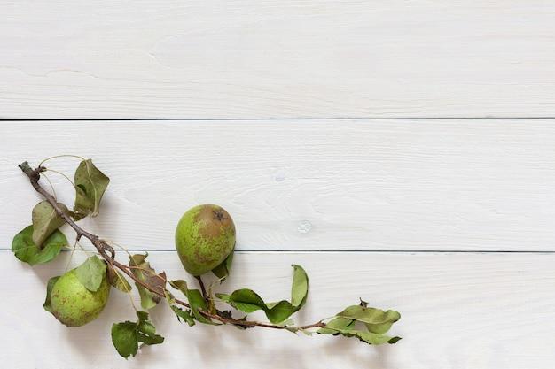 자연 흰색 나무 배경에 잎 신선한 유기농 녹색 배