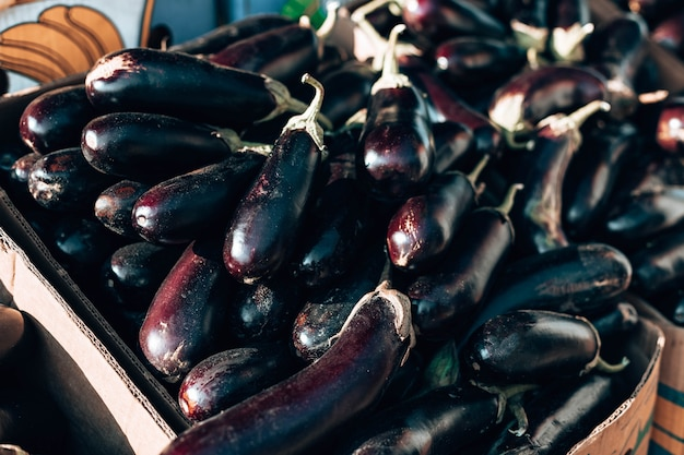 Fresh organic healthy eggplant vegetables in plastic boxes armers market local products