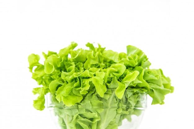 Fresh organic healthy green oak lettuce vegetable in a glass bowl