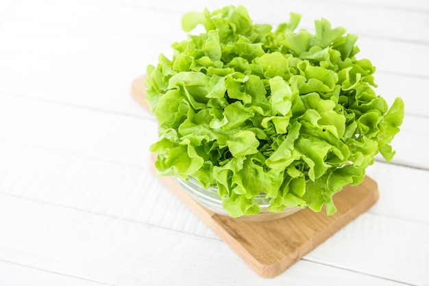 Fresh organic healthy green oak lettuce vegetable