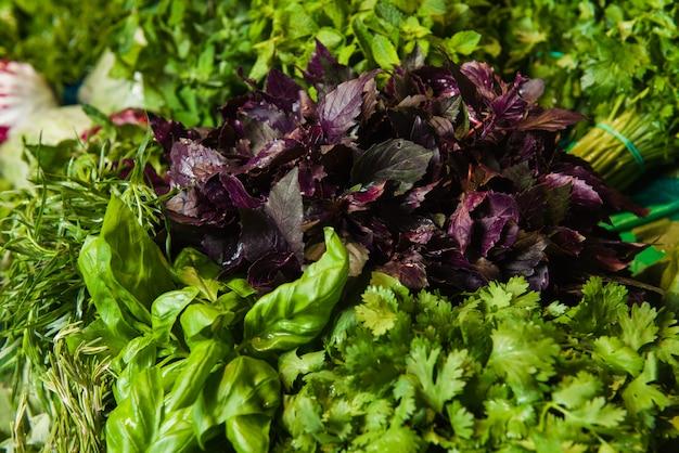 Fresh organic herbs on display