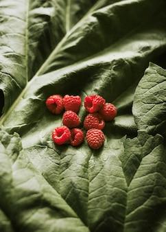 Fresh organic raspberries on green leaf flatlay