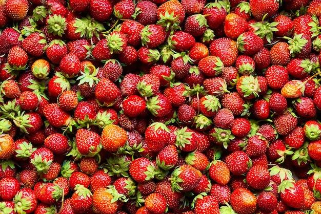 新鮮な有機イチゴの背景。
