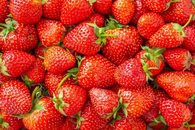 新鮮な有機イチゴの果実
