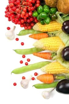 Свежие органические овощи, крупным планом