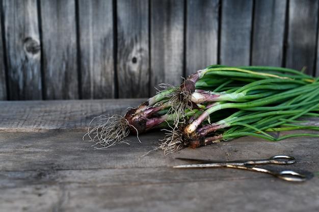 Fresh organic vegetables. food rustic background
